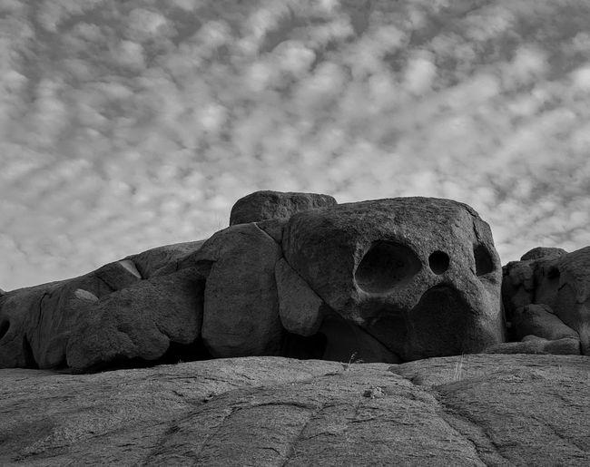 skull Skull No