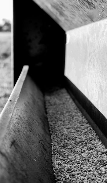 Feed bin for the sheep Agriculture Built Structure Close-up Grain Monochrome No People Sheep Food