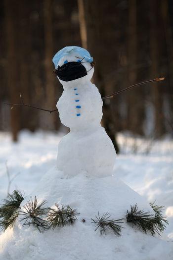 Close-up of frozen sculpture on land
