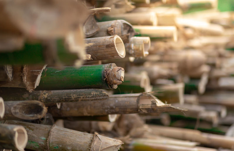 bamboo cylinder or bamboo cup using for juice ,herbal drink. Natural product from Bamboo. Industry Green Color Still Life Deforestation Abundance Nature Workshop Craft Art And Craft Outdoors Timber Focus On Foreground Close-up Old Day Stack Large Group Of Objects No People Selective Focus Wood - Material