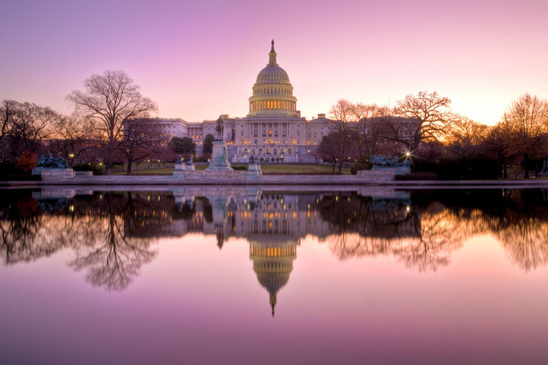 United States Capital Building Capitol Patriot Patriotic Patriotism US Capitol Building Architecture Building Exterior Built Structure Capital City Dome Government No People Reflection Sky Symmetry Travel Travel Destinations Tree Water