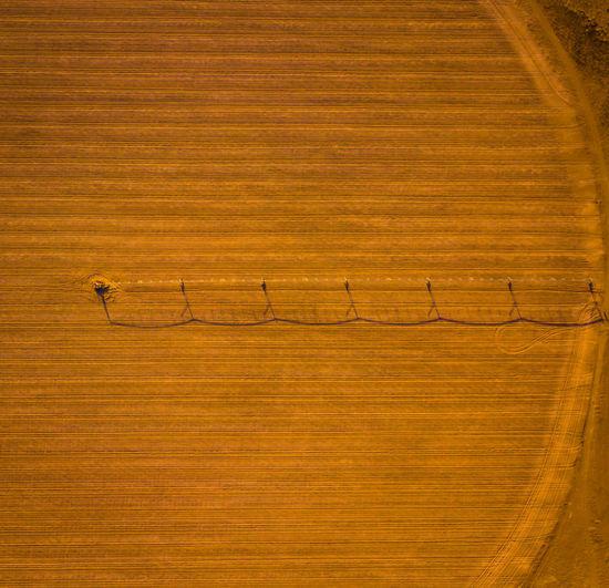 Crop Circle Farm Wheat Wheat Field Crop Circles Farming Fields No People