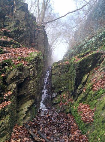 Rupertsklamm wanderweg im Winter Nature Hiking Trail Forest