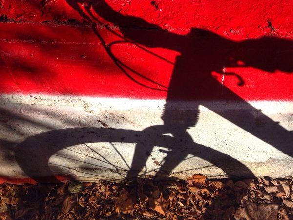Overshadowed Shadow Washington DC Bicycle MTB