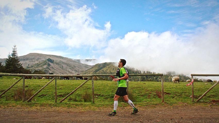 Madeiraisland Madeira Ultratrail Ultratrailer Runner Runners Trail Running Trail Ride World Travel Awards World Leading Island Destination 2015