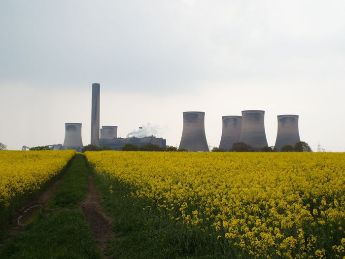 Fiddlers Ferry Power Station Fiddlers Ferry Power Station Chimneys Smoke Rapeseed Field Rapeseed Blossom Nature Vs. Industry Nature Vs Pollutants Industry Vs Nature Industry Pollution TakeoverContrast