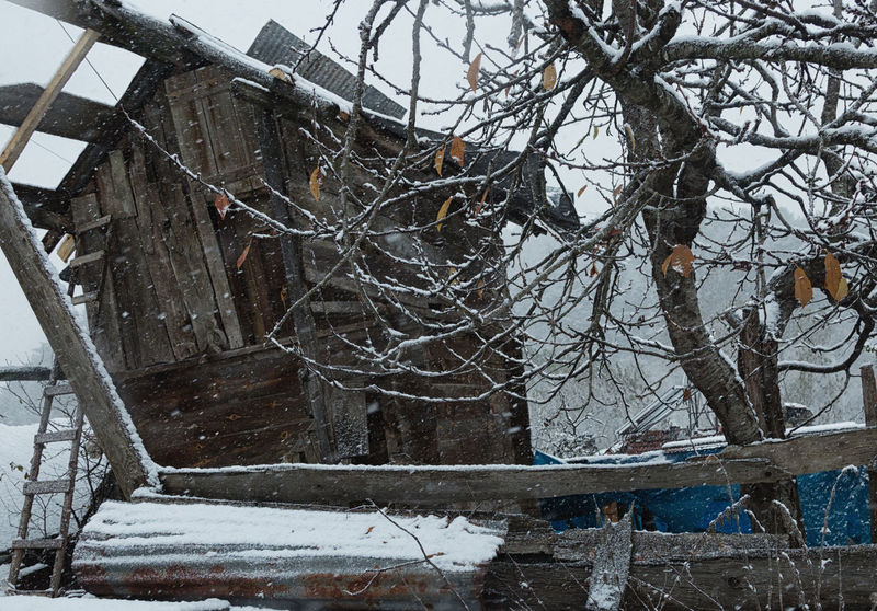 Snowy Village Life Abandoned Buildings Abandoned Places Architecture Bare Trees Branches Cold Cold Temperature Deterioration Icy Nature Snowing Snowy Structure Sünnet Sünnetköy Turkey View Village Life Winter Wood - Material