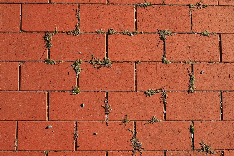 Backgrounds Red Full Frame Textured  Paint Pattern Brick Wall Close-up Architecture Built Structure LINE Painted Coral Colored