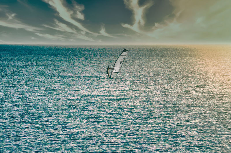 View of birds flying over sea against sky