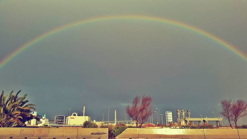 Alexandria - Cairo Highway in winter @Alexandria @egypt @highway @raining Beauty In Nature Double Rainbow Multi Colored Natural Phenomenon Outdoors Rainbow Sky Tree Weather first eyeem photo