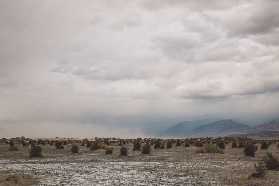 Arid Climate Arid Landscape Beauty In Nature Cloud - Sky Day Death Valley Death Valley National Park Desert Dunes Landscape Mountain Nature No People Outdoors Sand Storm Scenics Sky Storm Tranquil Scene Tranquility Water