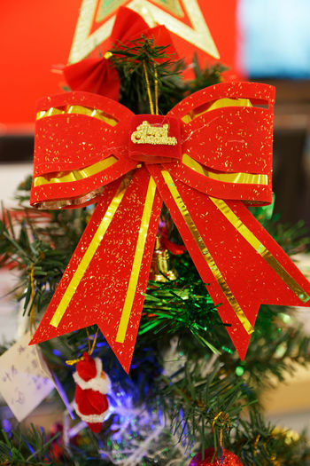 Close-up of christmas decorations on tree