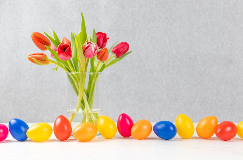 Close-up of multi colored tulips in vase