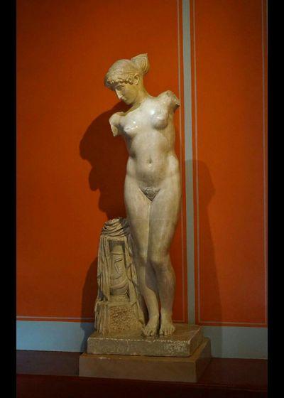 Roman Museum Visiting Museum Museum Woman Roman Ruins