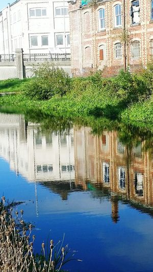 Tree City Water Flood Reflection Waterfront Residential Building Architecture Building Exterior Built Structure