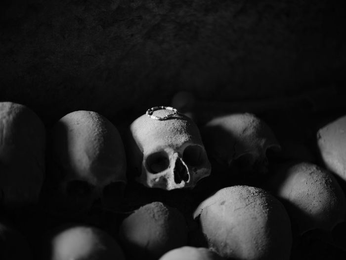 Close-up No People Human Skeleton Indoors  Spooky Large Group Of Objects Representation Still Life Body Part Human Representation Skull Selective Focus Group Bone  Fear Black Background