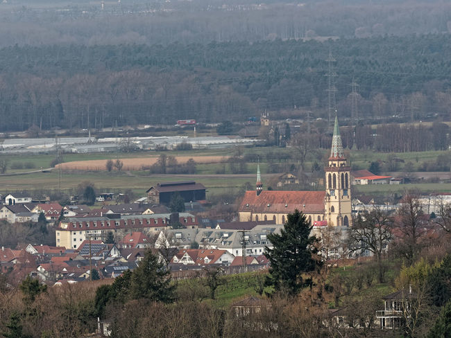 Sinzheim im Rebland, Kirche Rebland Rhine Valley Wine Yard Church Rheinebene Architecture Built Structure Building Exterior Day Religion Landscape Nature Outdoors Tree