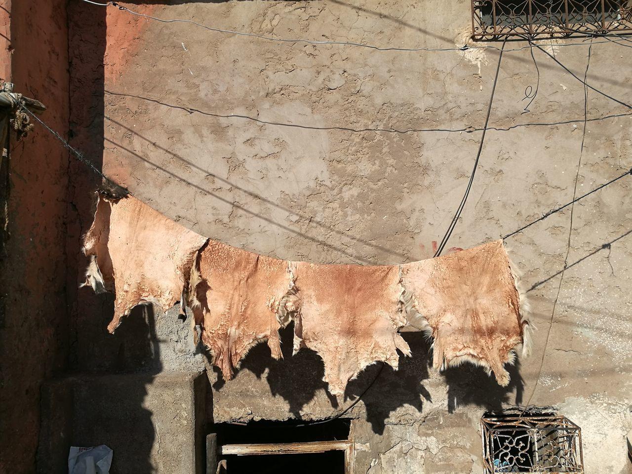 Close-Up Of Animal Skins Hanging Outdoors