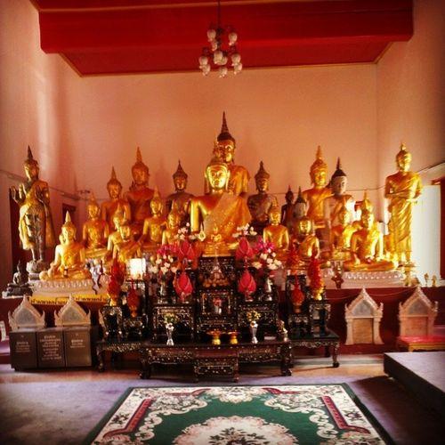 Tapınak Buda Budha