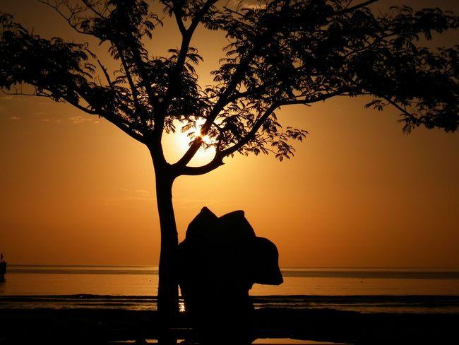 YanıIgı insanIar içindir; ancak siIginiz kaIeminizden önce bitiyorsa, fazIaca yanIış yapıyorsunuz demektir... Günaydın... Sunset Sky Sea EyeEm The Best Shots Photooftheday Gunaydinnn😊🌞✌ Günaydın Morning Sun Goodmorning :) Landscape Sunrise_Collection Sunrise And Clouds EyeEm Selects Hello World Hi! VSCO Ig_mood ünye Beach Morning Beauty In Nature Thaking Photo Ig_shutterbugs Blacksea Vscocam Go Higher