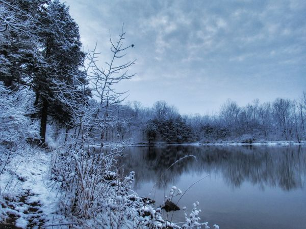 https://youtu.be/GfZPtkqXQIA -- I can't remember the last time we had a White Christmas.❄🎄❄ 🙌Tree Lake Nature Winter Sky Reflection Snow Cold Temperature Water Tranquil Scene Bare Tree Frozen Scenics Beauty In Nature Tranquility No People Landscape Outdoors Forest Day Atmospheric Mood Dramatic Sky Exceptional Photographs Tranquility EyeEm Ready   EyeEmNewHere Shades Of Winter