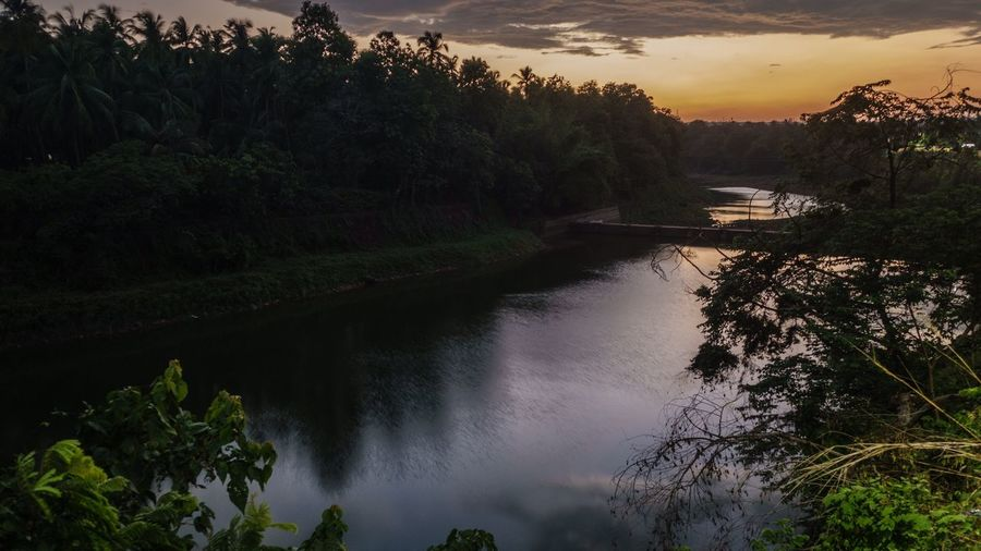 The Great Outdoors - 2017 EyeEm Awards Tree Water Nature Beauty In Nature Scenics Tranquil Scene Sunset Outdoors No People Tranquility River Plant Sky Day