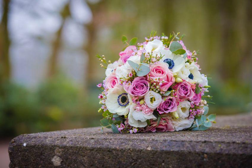 Brautstrauß Brautstrauss Brautstrauss Bridal Bouquet Plant Flower Flowering Plant Nature Pink Color Focus On Foreground Beauty In Nature No People Wedding Freshness