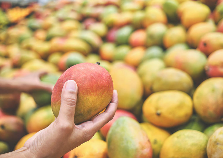 Close-up of hand holding apple at market