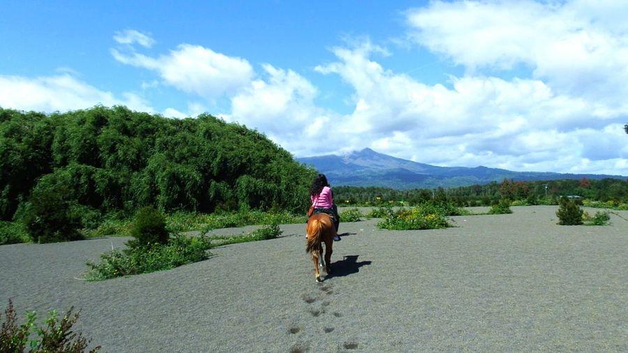 Chile♥ Puerto Montt,Vulcano Pampas Horse Riding Outdoors Landscape Nature