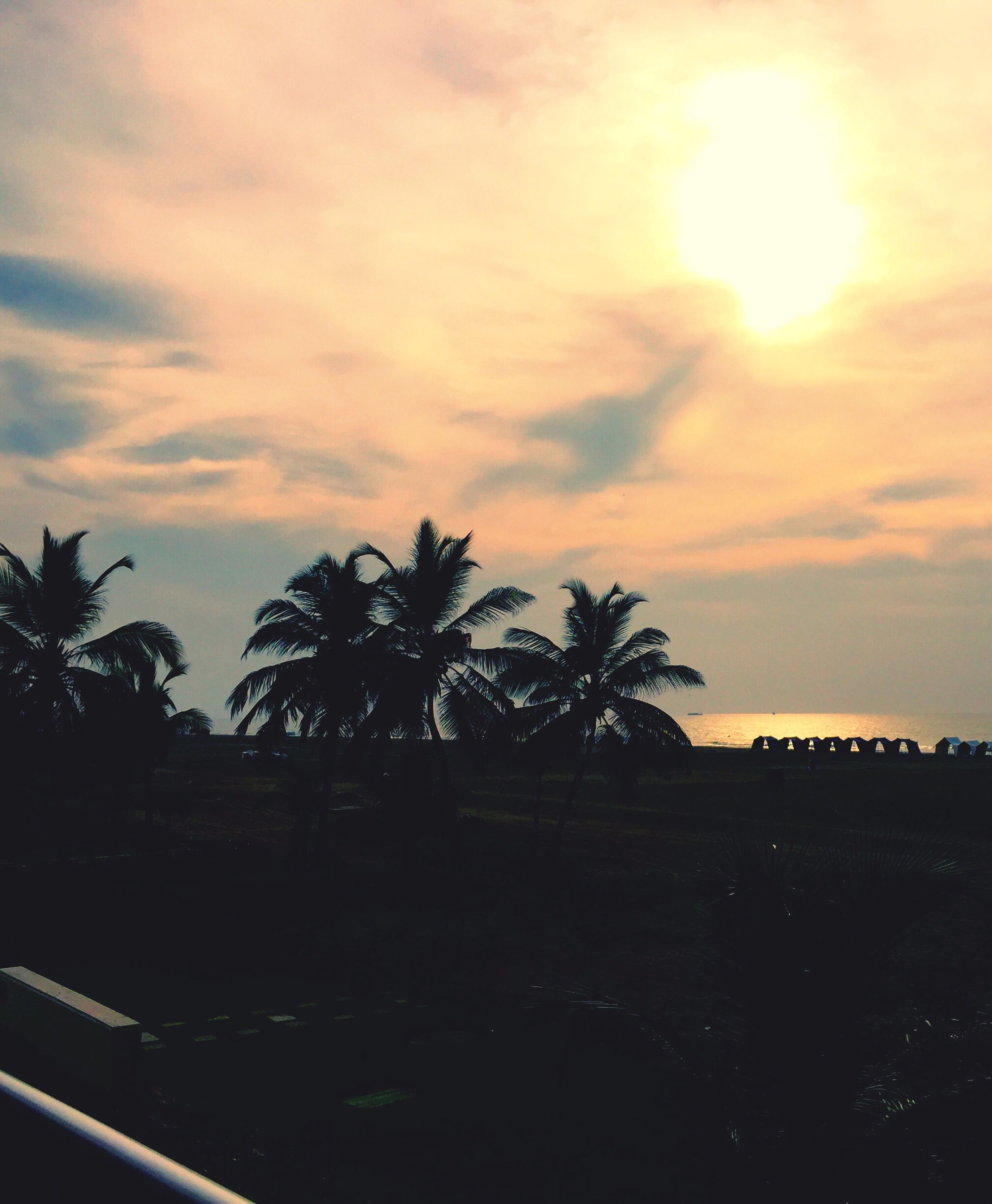 sunset, palm tree, sky, silhouette, tree, cloud - sky, built structure, architecture, building exterior, sun, nature, beauty in nature, tranquility, scenics, growth, cloud, tranquil scene, cloudy, sunlight, low angle view