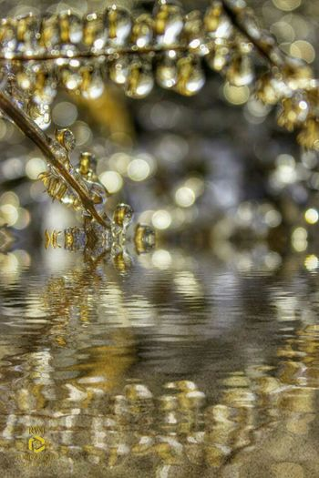 Reflections of ice Close-up Ice, Reflecting, Rvmphotography, Water