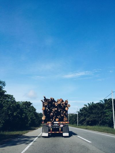 Truck Transporting Logs On Highway Against Sky