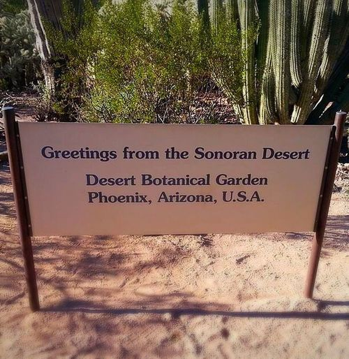 Desert Botanical Garden Arizona Way Out West Phoenix Desert Dbg Sign Signage Greetings Natural Beauty