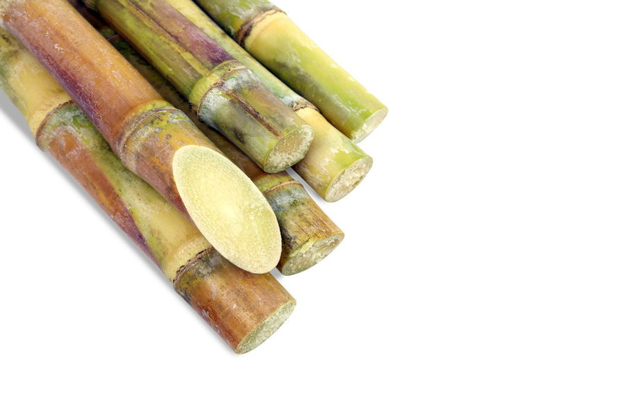 Sugarcane, Cane, Sugarcane piece fresh, sugar cane on white background, Sugarcane agriculture Sugarcane Cut Sugarcane Fresh Close-up Copy Space Cut Out Food Food And Drink Freshness Green Color Group Of Objects Healthy Eating High Angle View Raw Food SLICE Still Life Studio Shot Sugarcane Sugarcane Field Sugarcane Juice Sugarcane Plantation Sugarcane Seller Sugarcane Tree Sugarcanejuice Vegetable White Background
