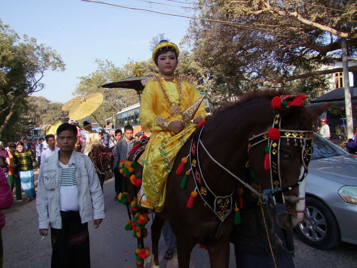 Shin Pyu Ceremony for Novices, Bagan Bagan Blue Sky Buddhist Culture Buddhist Tradition Composition Crowd Full Frame Horse Looking At Camera Myanmar Outdoor Photography Religious Ceremony Shaded Traditional Clothing Traditional Festival Tree Woman Portrait Woman Riding Horse Yellow Dress Young Woman