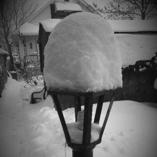 Snow Winter Blackandwhite My Blah Blah Photography