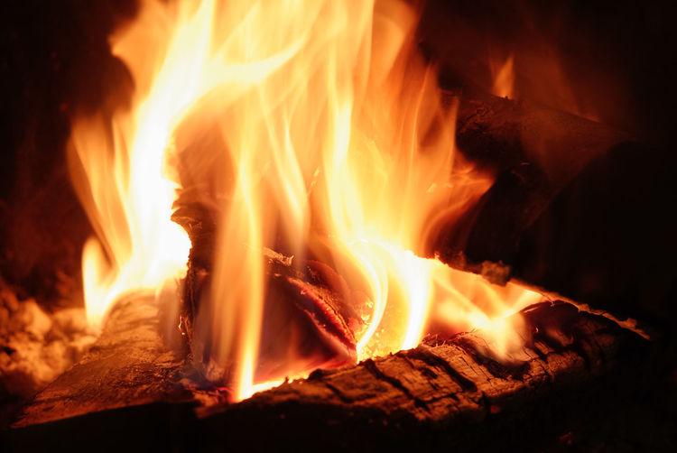 Close-up of firewood burning at night