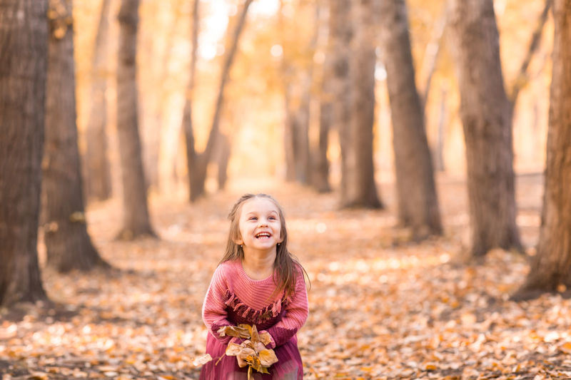 Portrait of a girl in autumn leaves