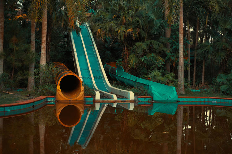 Water slides amidst plants and trees