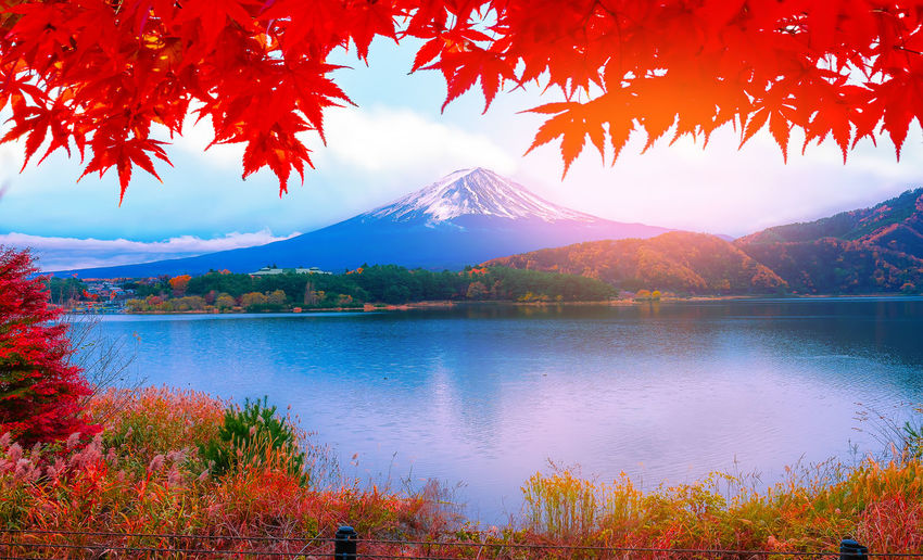 Scenic view of lake and mt fuji during autumn