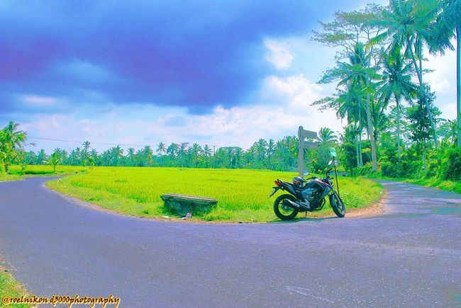 somewhere in Ubud, Bali, Indonesia Lets Get Lost On The Road Enjoying Life Riding A Bike