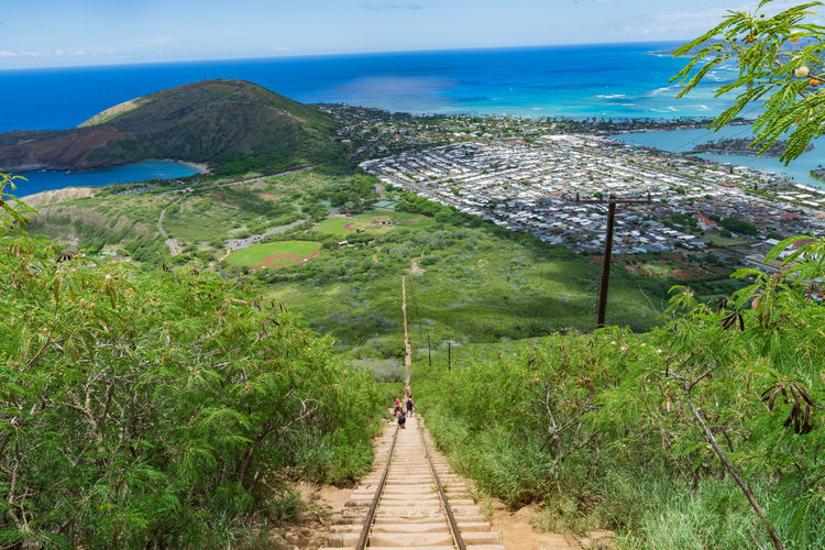 Hawaii Oahu Amazing Beauty In Nature Day Direction Environment Green Color Growth Kokohead Land Landscape Leisure Activity Mountain Nature Non-urban Scene Outdoors Plant Scenery Scenics - Nature Sky The Way Forward Trail Tranquil Scene Tree