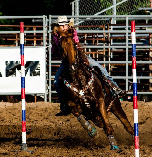 Sports Photography Horse Dirt Speed Rodeo