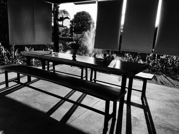Flowers Light Light And Shadow Design Cafe Shadows & Lights Thailand Interior Design Summer Sunlight Table Shadow Chair Close-up Architecture Empty White Line