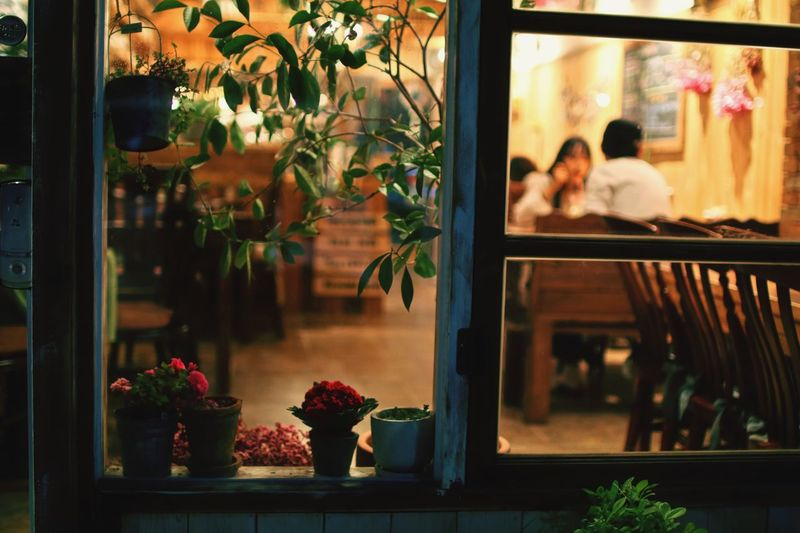 Potted Plants On Window At Restaurant
