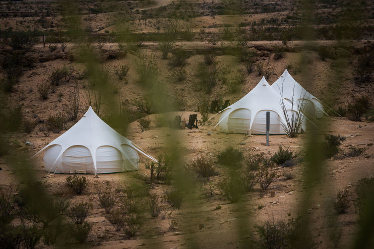 View of tent on land