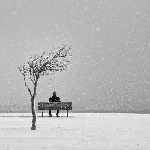 Rear View Of Person Sitting On Park Bench During Snowfall