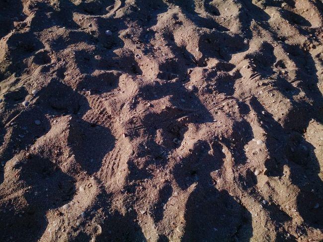 Sand marks Mobilephotography Xperia ZL Naturaleza Progreso Mérida, Yucatán Nature Beach Close-up Outdoors Footprints In The Sand Footprints Sand