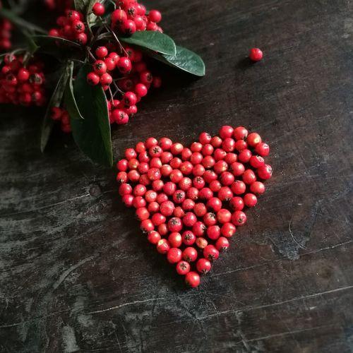 Feliz Navidad Christmastime Corazón Heart Red Cotoneaster