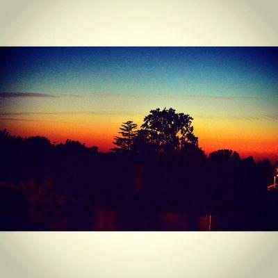 Sun Nature EyeEm Nature Lover Sunset